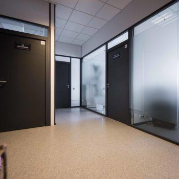 изготовление стеклянных перегородок с дверью 2