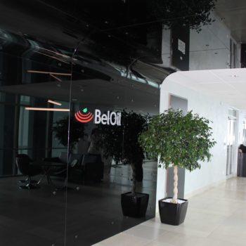 Входная черная стеклянная дверь в офис Beloil, фото 2