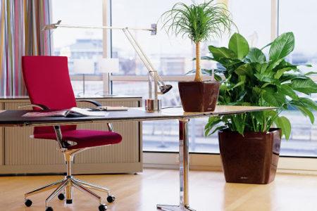 5 принципов организации рабочего пространства